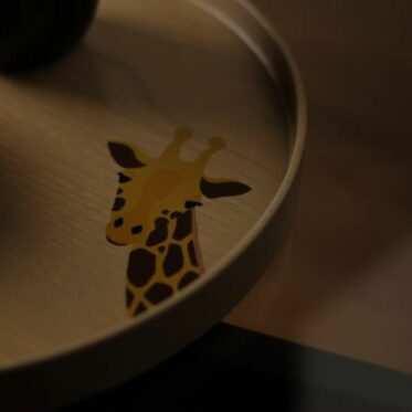 Marubon Night ZOO, Giraffe