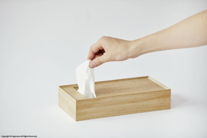 Take the tissue paper from the tissue box.